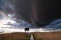 dark storm cloud over observation tower