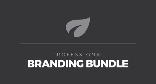 Mega Branding Bundle