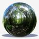 Undercover Trees HDRI