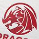 Dragon Emblem Logo