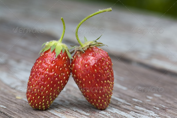 two strawberries - Stock Photo - Images