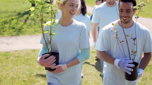 Joukko vapaaehtoisia kanssa taimia In Park 6 - People Arkistofilmit