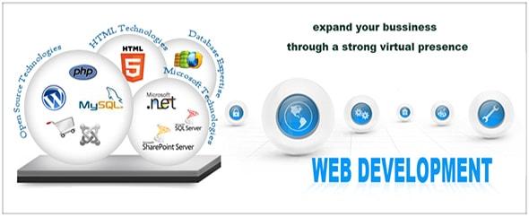 Web development company in delhi3 min