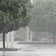 Heavy Rain, a Downpour in the City Park