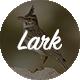 Lark - WordPress Magazine & Blog Theme