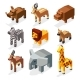 Isometric 3d African Savannah Animals