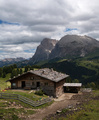 lovely summer alpine scenery