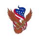 American Eagle USA Flag Drawing