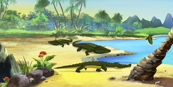 Nile Crocodile - Taustat Luonnosta Motion Graphics