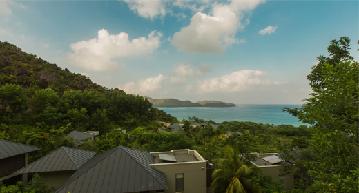 Tropical and mountain views