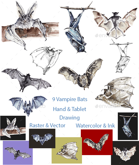 Vampire bats (Watercolor and Ink, Vector and Raster)