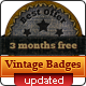 Vintage and Western Badges - GraphicRiver Item for Sale