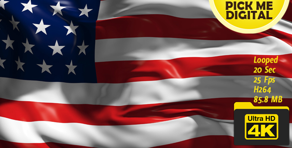 USA Flag - Tapahtumat Taustat Motion Graphics