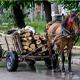 Wooden Cart Pack