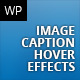 Image Hover Caption FX - 216 Hover Effects
