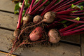 Beets on a wood background - PhotoDune Item for Sale