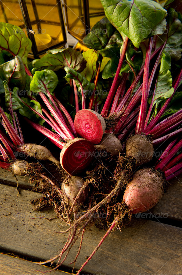 Organic Beetroot - Stock Photo - Images