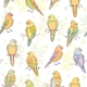 Parrots Seamless Pattern