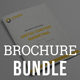 Content Marketing Brochure Bundle