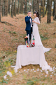 Romantic autumn pine forest picknick of happy just married couple celebrating their marriage