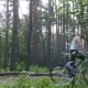 Two Bikers Riding a Bike On Pathway In Forest. Mountain Bikers Passing By The Camera In a Green