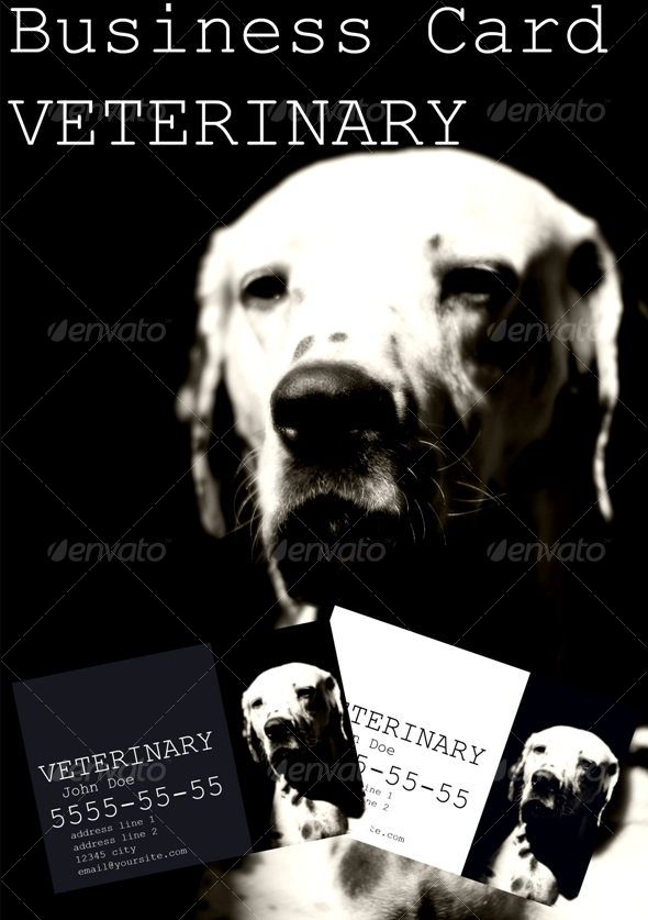 Business Card Veterinary - Business Cards Print