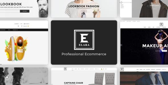 Download Elara - Responsive Multipurpose WordPress WooCommerce Theme