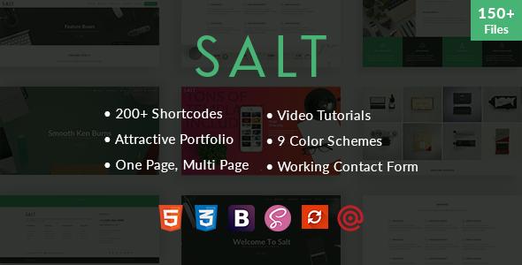 Download Salt - Multi-purpose HTML5 Template
