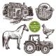 Farm Hand Drawn Sketch Set