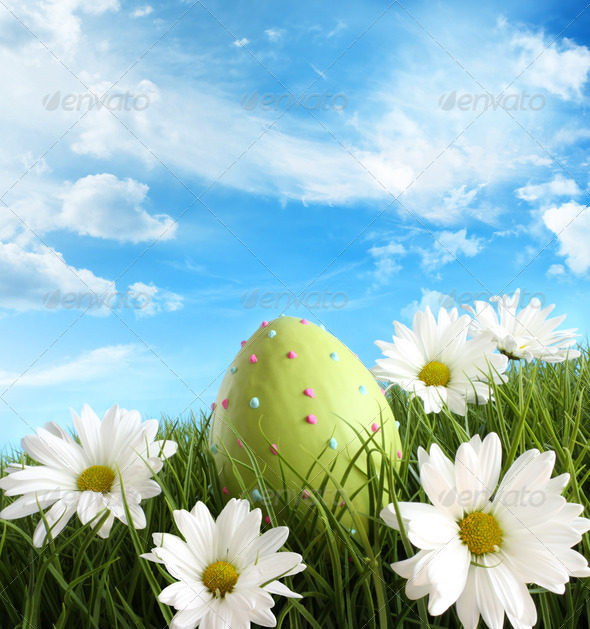 Easter egg in the grass with daisies - Stock Photo - Images