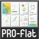Pro Flat Infographic Brochure. Set 5