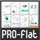 Pro Flat Infographic Brochure. Set 3