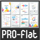 Pro Flat Infographic Brochure. Set 2
