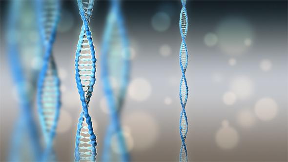 DNA - 3DOcean Item for Sale