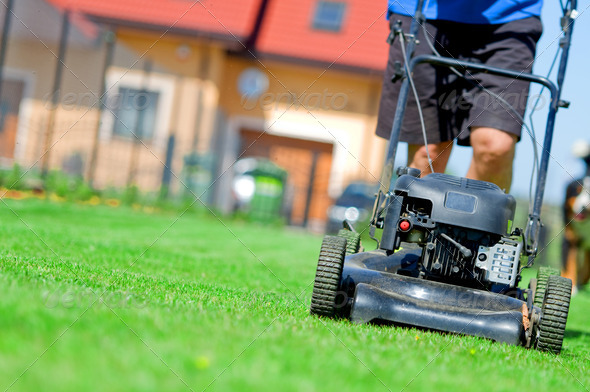 PhotoDune Mowing the lawn 1673526