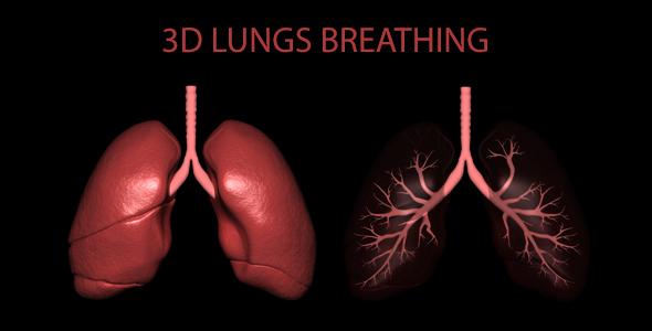 3D Keuhkot Hengitys - Medical Elements Motion Graphics