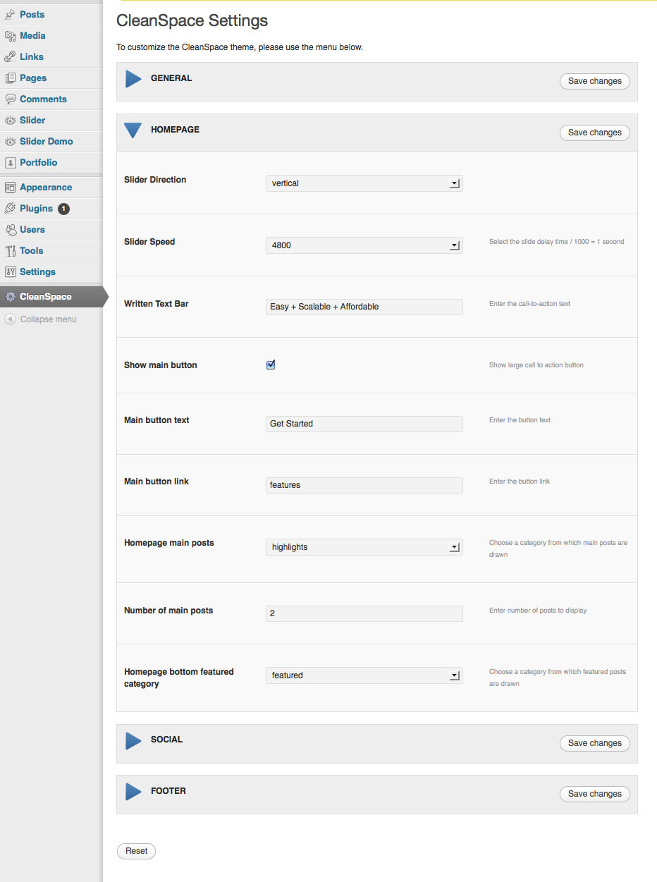 CleanSpace WordPress Theme - Screenshot of CleanSpace theme settings panel.