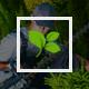 Gardener - Gardening, Lawn and Landscaping Joomla Theme