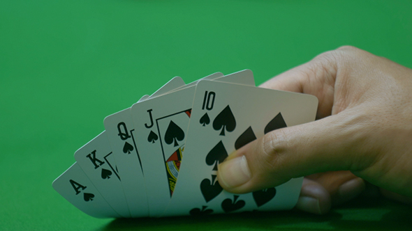 Download Playing Cards nulled download