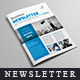 Newsletter For Corporate Business (8 Pages)