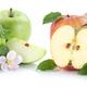 Apple fruit apples fruits sliced slice half isolated on white