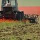 Tractor Mowing Poppy Field
