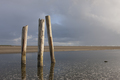Scenic view of posts in outlet.