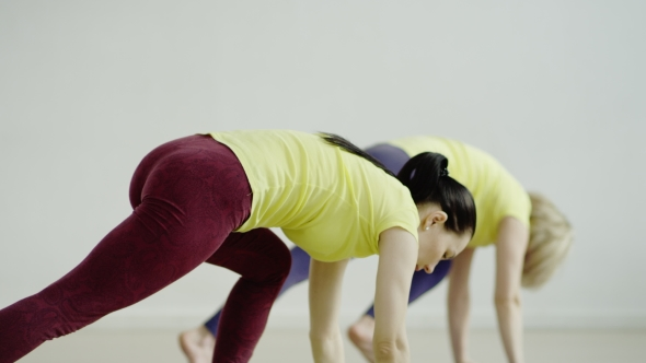 Download Young Woman Is Practicing The Downward Facing Dog Pose nulled download