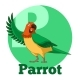 ABC Cartoon Parrot
