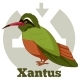 ABC Cartoon Xantus