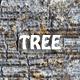 Tree Bark Texture 3D