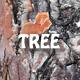 Tree Bark Texture 3 3D