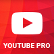Youtube Pro for WordPress