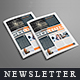 Newsletter For Corporate Business (12 pages)